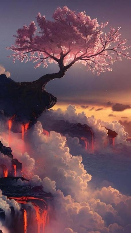 Ronald Jackson • Fuji Volcano, Japan, Cherry Blossom