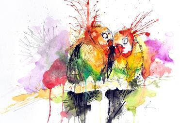 homeboaboa-envsrcboawebsitesite_medialove-birds_1